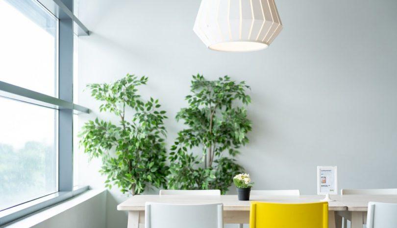 Dekorative Highlights mit einem Pflanzenständer setzen